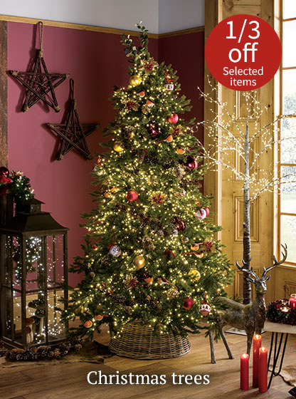 Christmas trees - 1/3 off