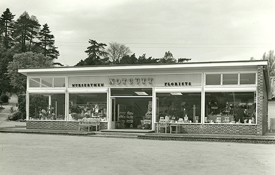 The first Notcutts garden centre