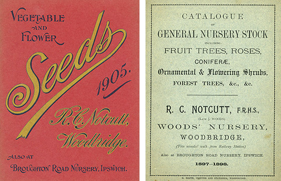 Roger Cromton Notcutts nursery catalogues