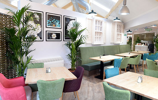 New Notcutts Woodbridge Garden Centre Restaurant