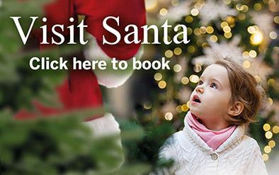 Visit Santa - Book now