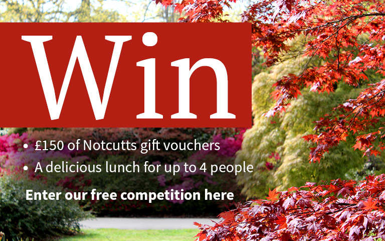 Win with Notcutts competition