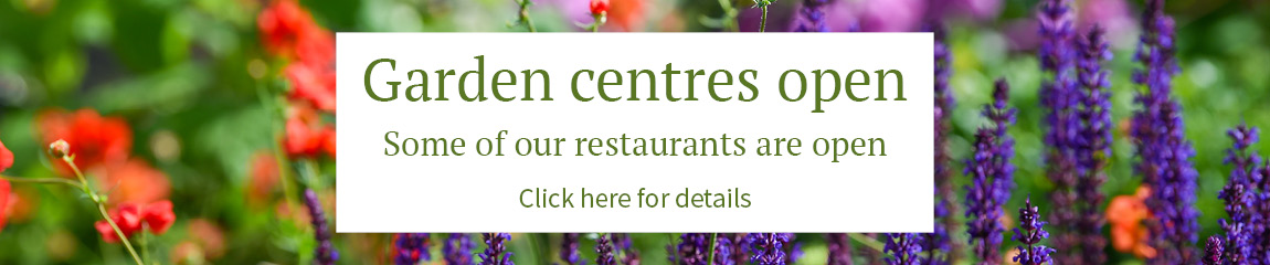 Our garden centres and some restaurants are open