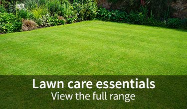 Lawn care essentials