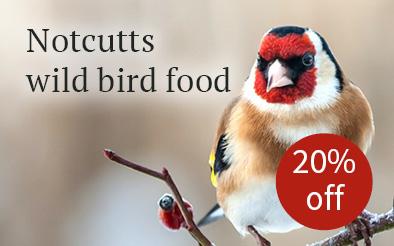 Notcutts wild bird food  - 20% off