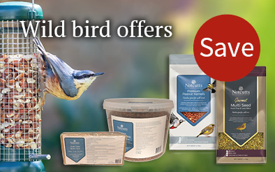 Wild bird offers