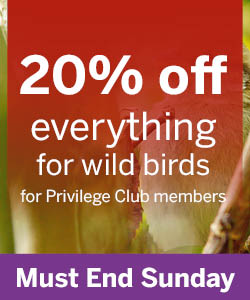 20% off everything for wild bird for Privilege Club members