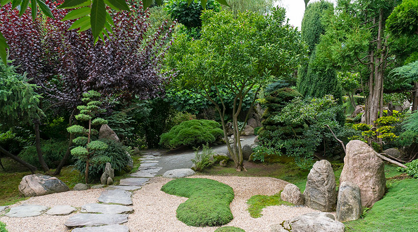 Strange Oriental Garden Notcutts Interior Design Ideas Oteneahmetsinanyavuzinfo