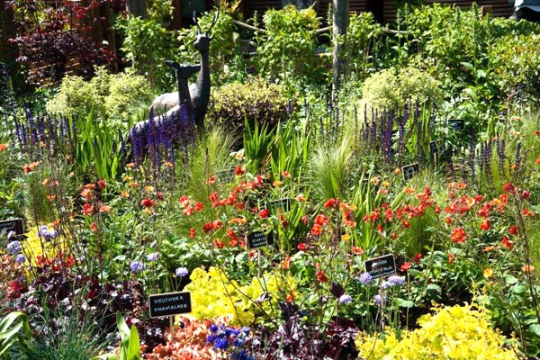 Norwich Garden Centre Show Garden