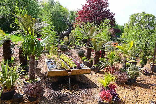 Tunbridge Wells Garden Centre Show Garden