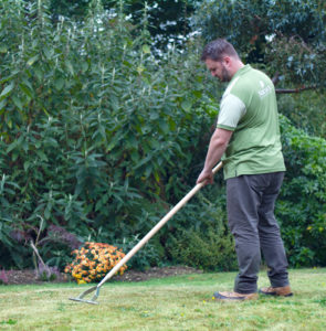 How to care for your lawn in autumn
